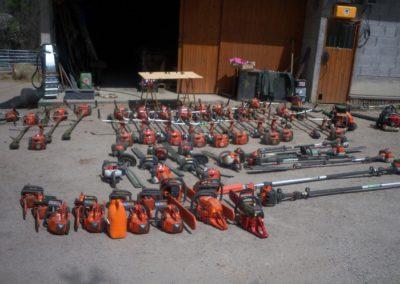 élagage et entretien arbres à proximité de Briançon