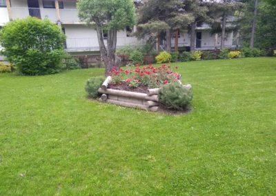 Montagne verte entretien jardins sur l'Argentière la Bessée