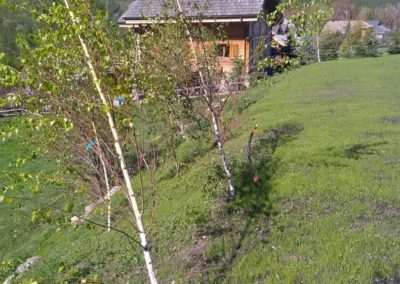 Montagne verte-Entretien d'espaces verts à Briançon