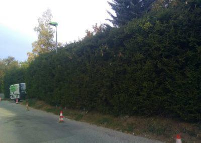Aménagement de jardin à Briançon