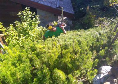 Entretien jardin sur l'Argentière la Bessée